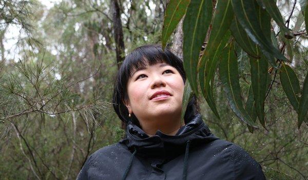 New Shoots - Eucalyptus.jpg