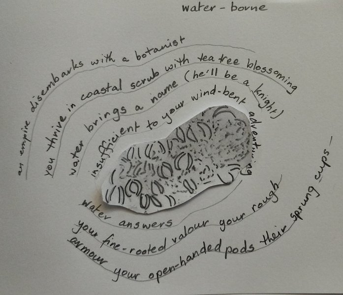 Anne Elvey Water-borne.jpg