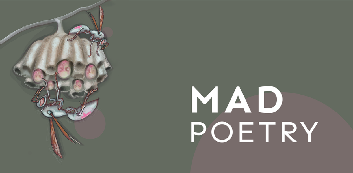 MAD Poetry-Red Room Poetry-hero-1365×670.png
